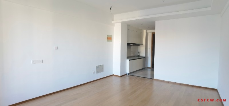 世茂商圈-凤凰城1室1厅全新精装修公寓,61.8万,交通便利配套齐全,有钥匙