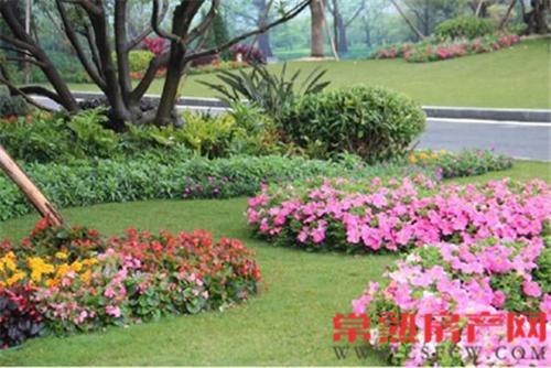 诗意园林恬静港湾 琴川碧桂园打造品质社区