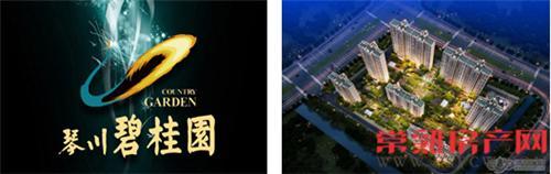 琴川碧桂园2015旗舰精品发布会31日登场
