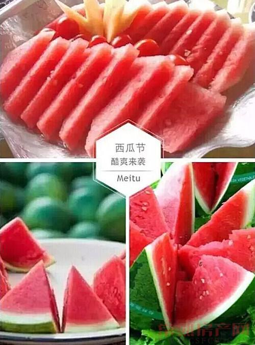 港龙西瓜节酷爽来袭 火热引爆激情盛夏!