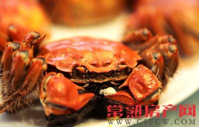 一大波蟹宴正在席卷虞城 真是馋死宝宝了
