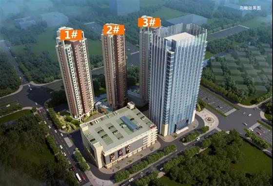 又一重量级国际学校来了 滨江房价yao不淡定