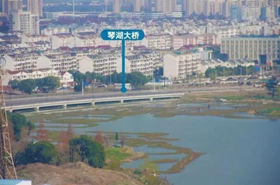 琴湖小镇丨琴湖,未来已来!