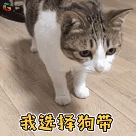 """出发!舌尖旅行 FUN肆搞""""食"""""""